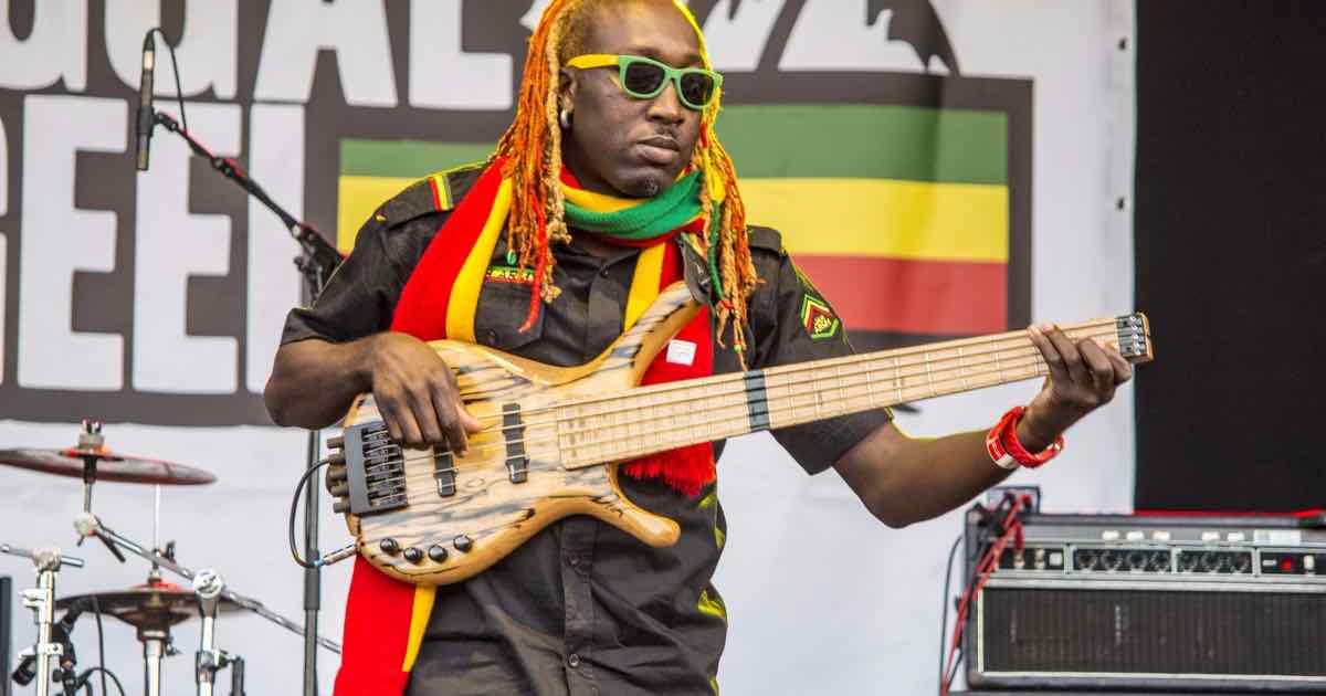 san diego reggae music